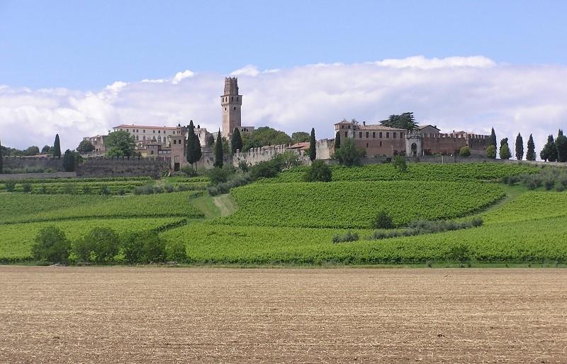 Strada del Vino Castello di San Salvatore