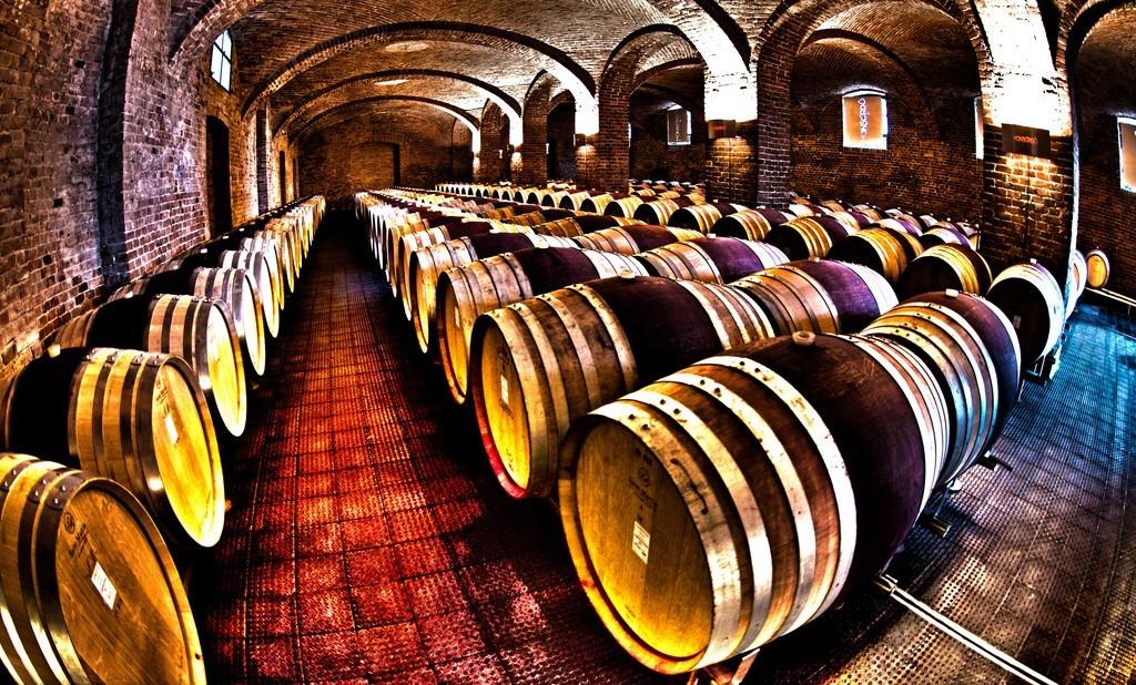 Vino - produzione