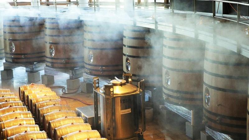 vino-produzione