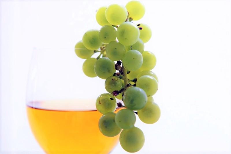 vino è cultura -consumo-vino