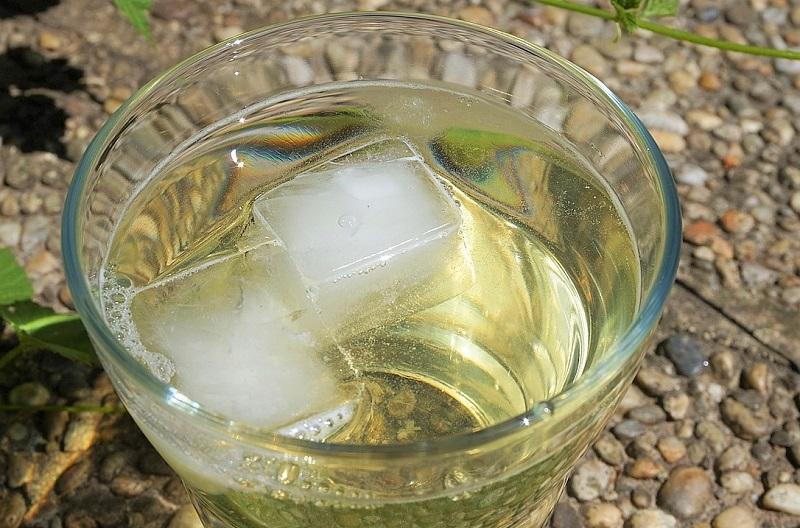 sommelier-vino-e-ghiaccio
