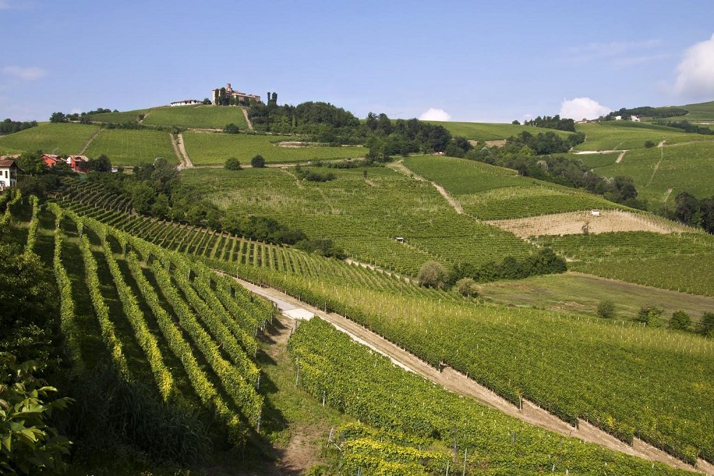 vigneti storici panorama-vitivinicolo-delle-langhe