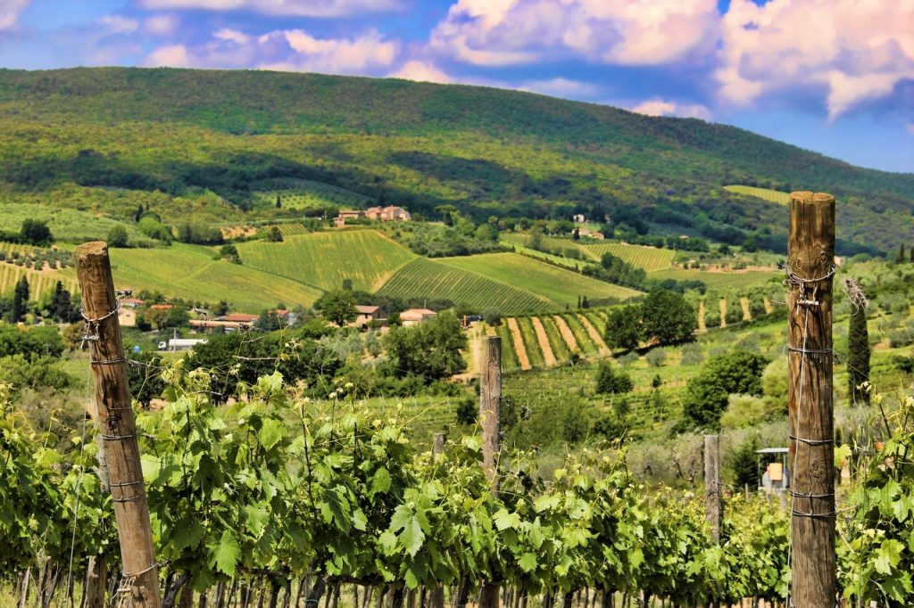 vigneti storici panorama-vitivinicolo-toscano