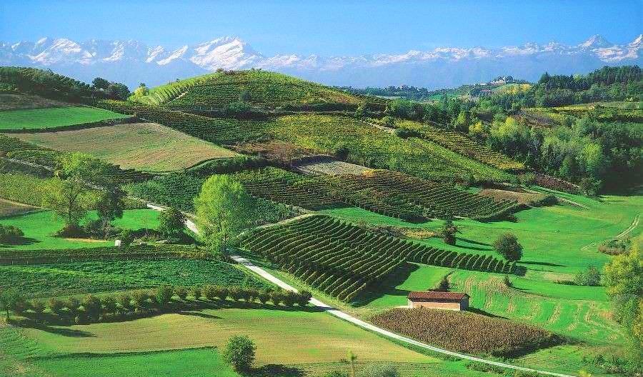 Cantine Aperte a San Martino monferrato